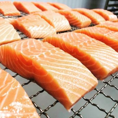 Verlasso Salmon Filet - Raw
