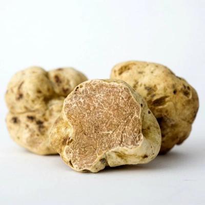 Fresh White Truffles (Tuber Magnatum Pico) - LIMITED DELIVERY DAYS