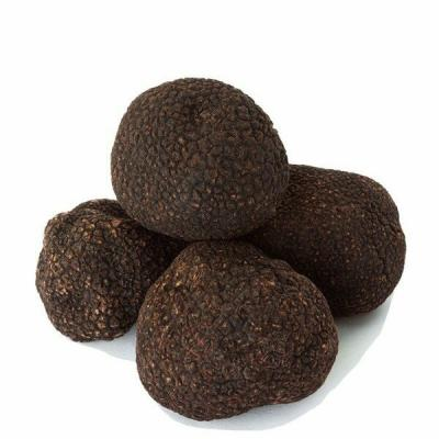 Fresh Black Winter Truffles (Tuber Melanosporum) - LIMITED DELIVERY DAYS