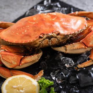 Whole Dungeness Crab